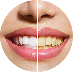 General / Cosmetic Dentistry
